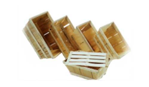 Упаковка для мидий и устриц 1