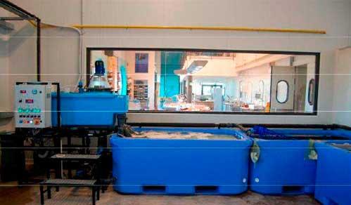 Системы хранения и передержки морепродуктов 6