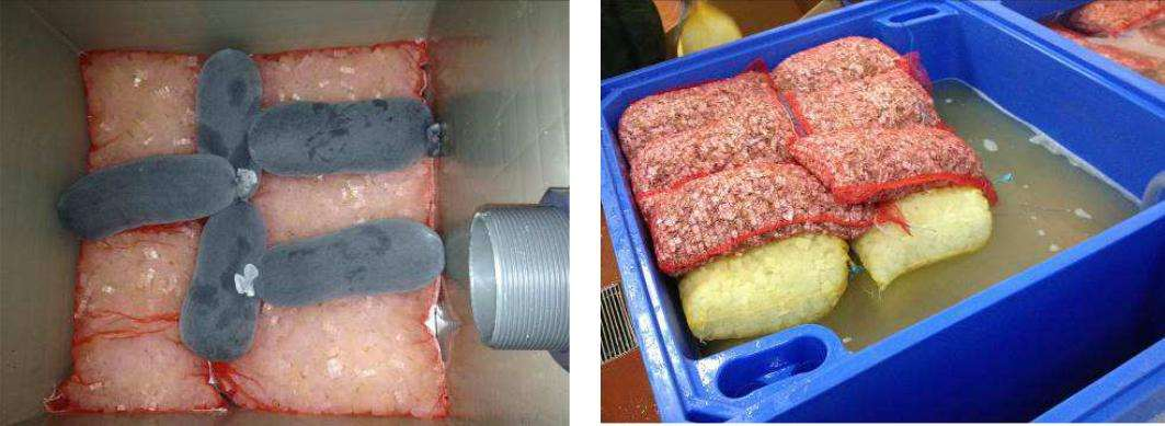 Системы хранения и передержки морепродуктов 10