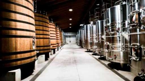 Проектирование винодельческого хозяйства 1