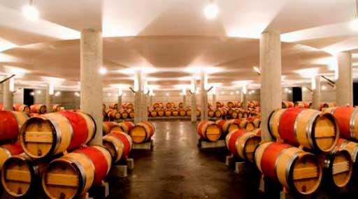 Проектирование винодельческого хозяйства 2