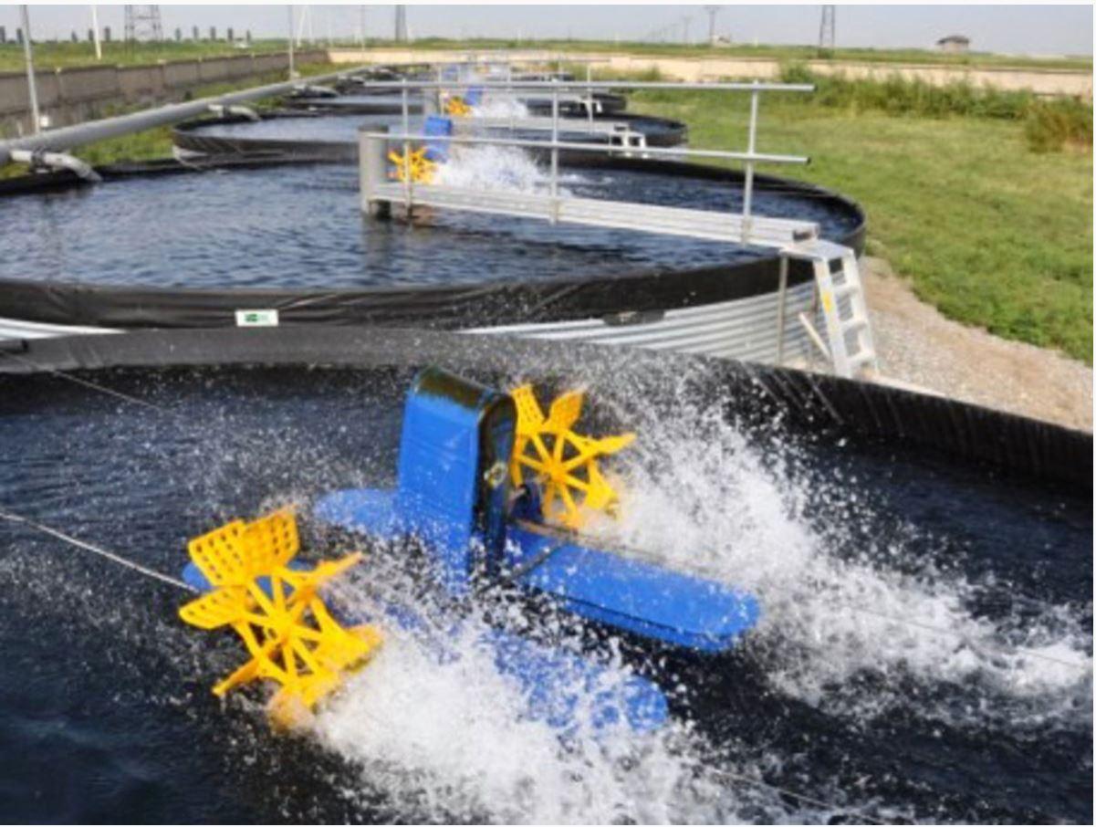 Оборудование для разведения аквакультуры в УЗВ 2